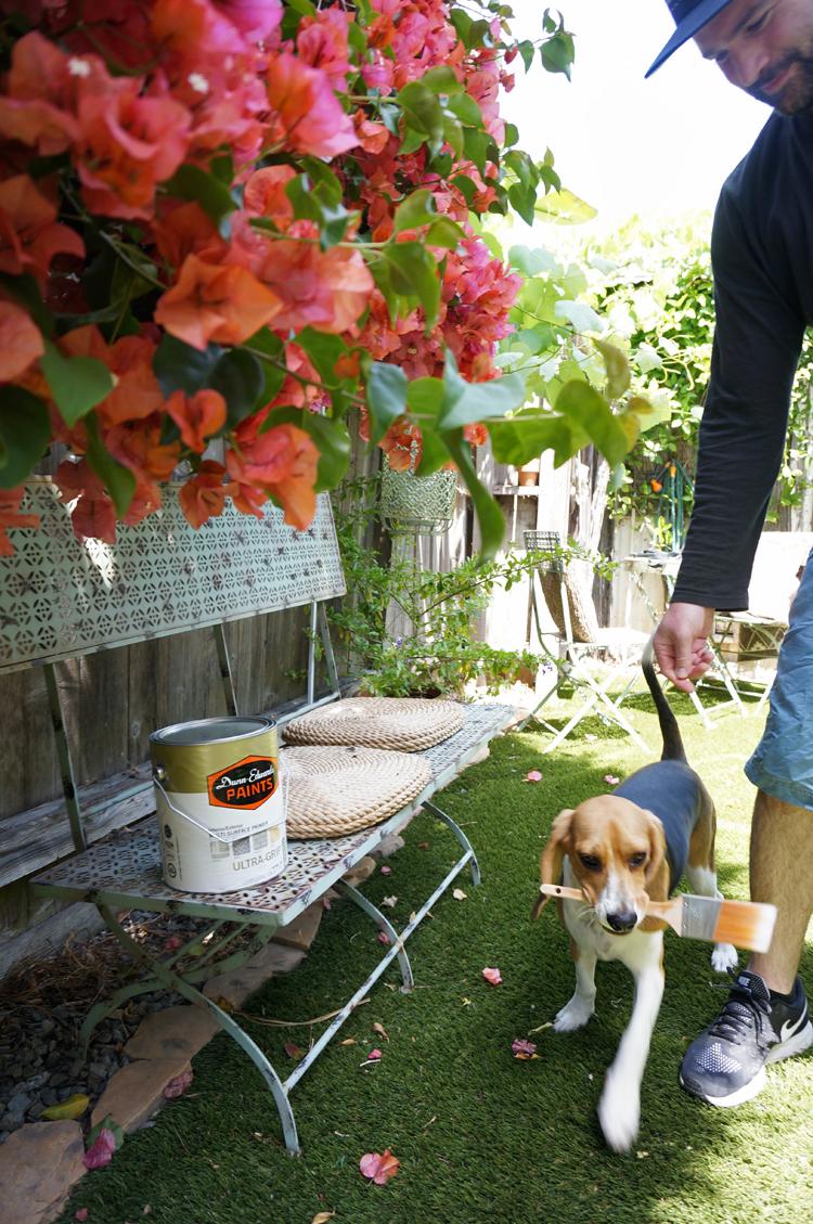 adam sophee garden.jpg