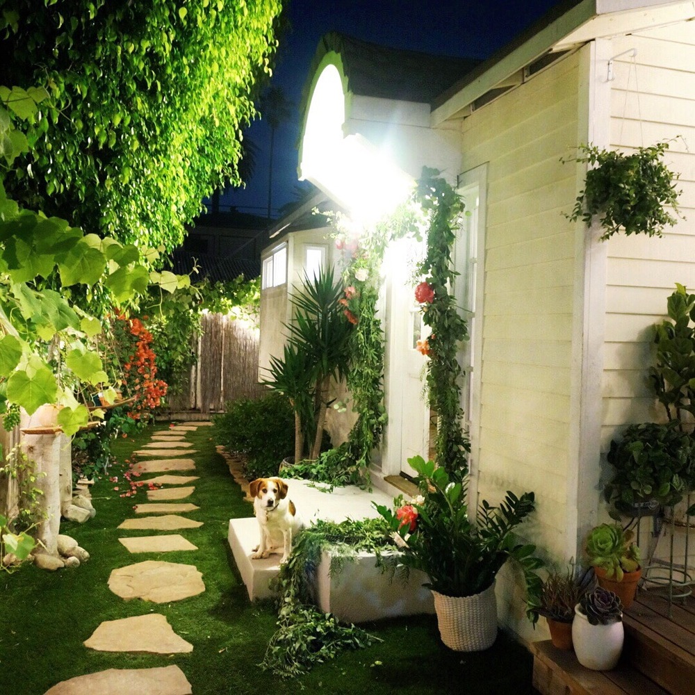 Above: The stoop and side garden, where we said our vows.