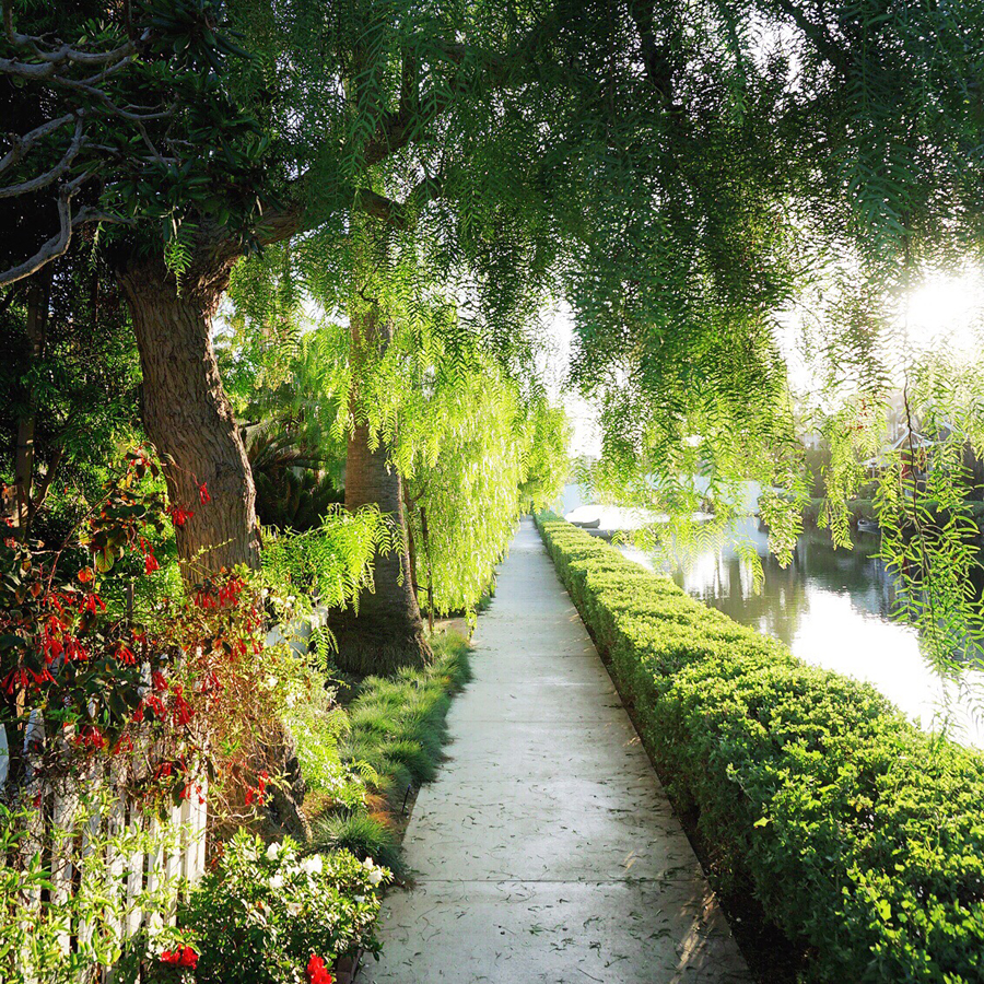 whitney leigh morris canals.jpg