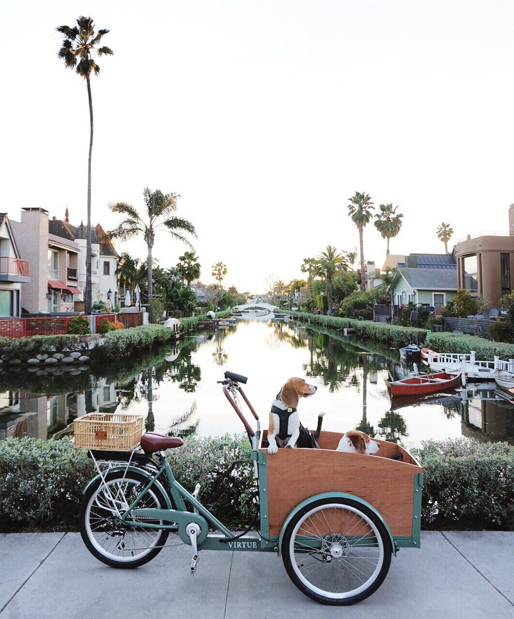 Bike - Venice 2.JPG