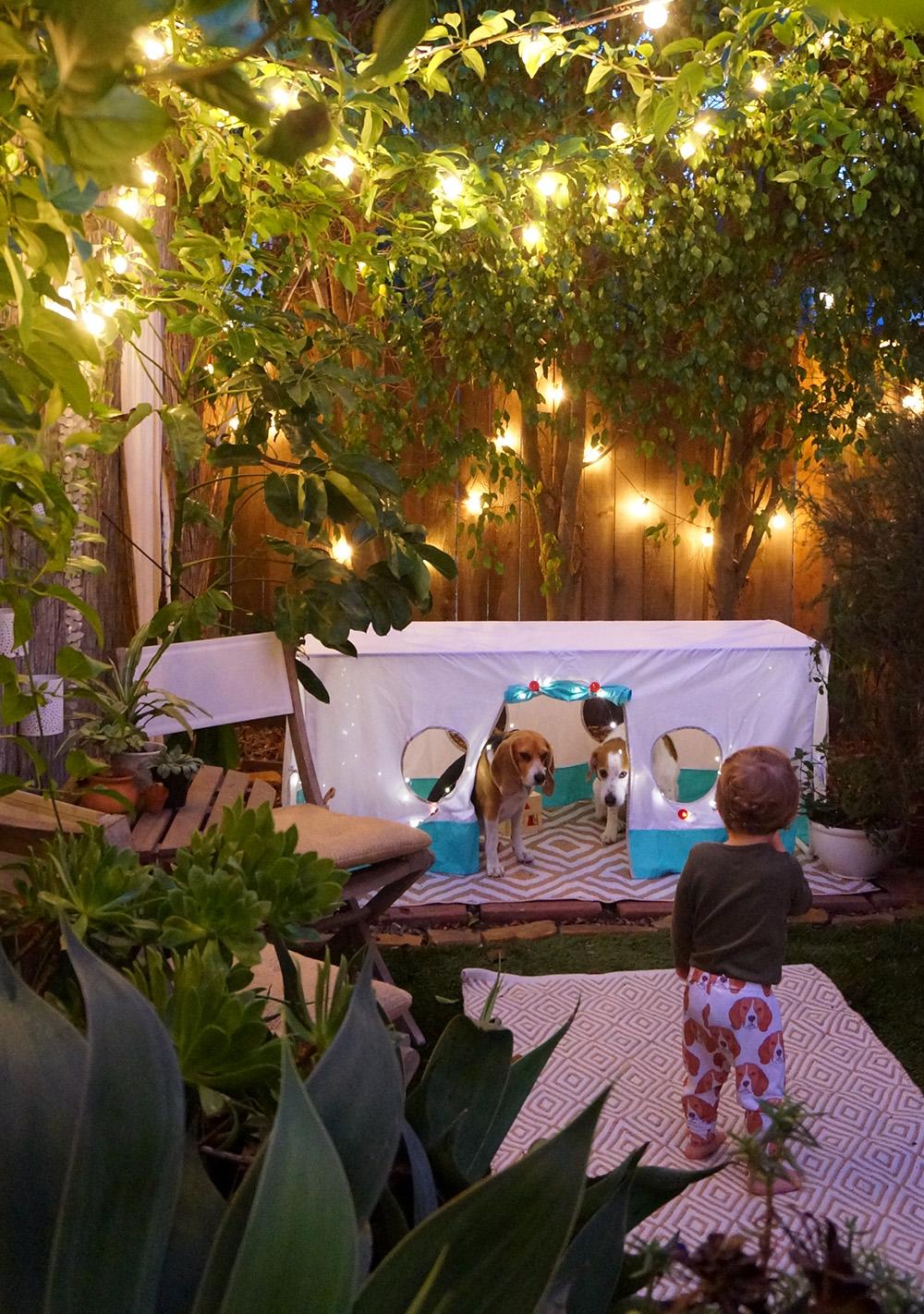 west pups tent blog.jpg