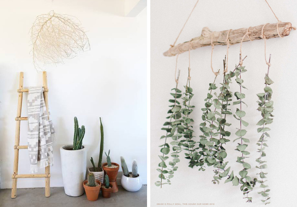 Left: My friend Lindsay of Casa Joshua Tree suspended a tumbleweed from her ceiling to create striking visual impact at no cost. Right: Polly of This House Our Home tied dried eucalyptus to a driftwood branch, creating a lovely, natural work of wall art that can be modified to be as full or sparse as desired.
