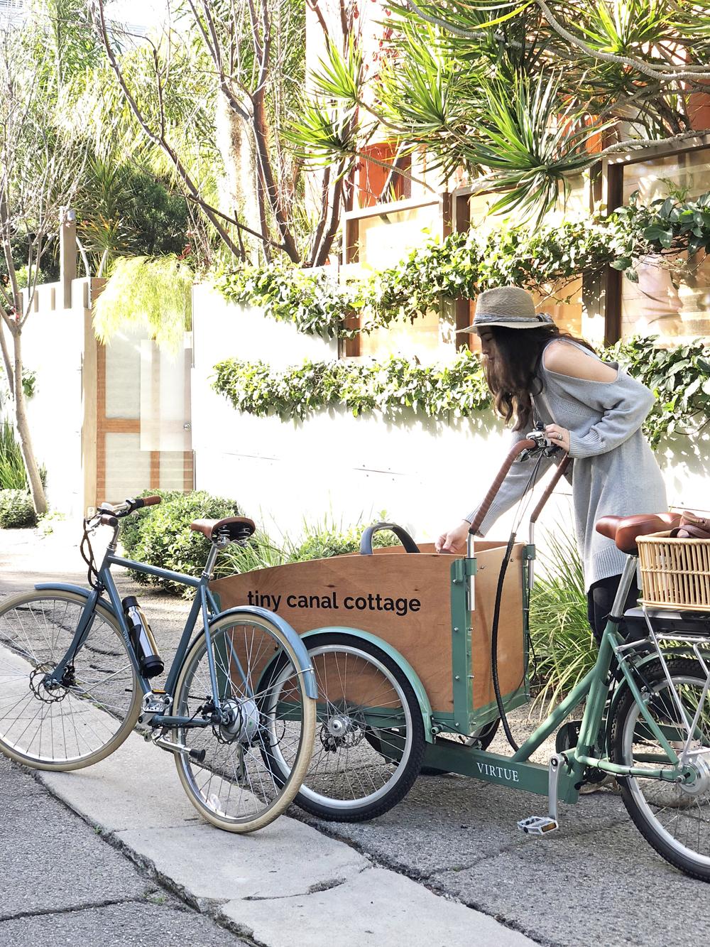 bike whit.jpg
