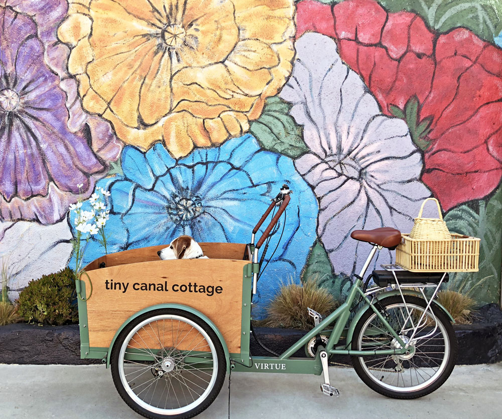 blog_stubs bike floral wall.jpg