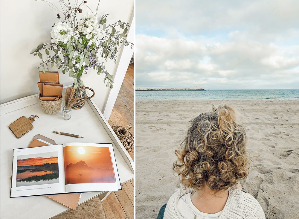 Left - Photos from my neighborhood in Florida (from a book by photographer and friend  Mac Stone ). Right - West on my lap as we picnic here by the Pacific and watch dolphins in the waves.