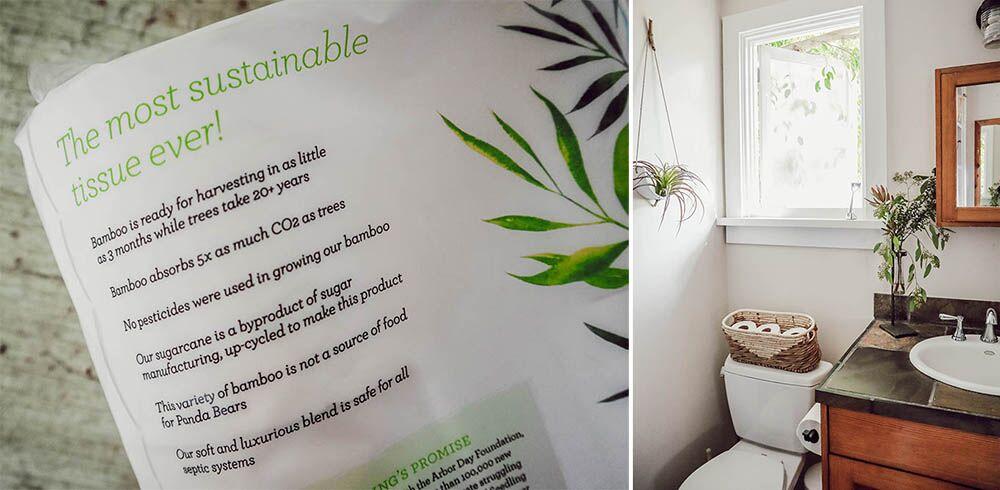 eco_toilet_paper.jpg