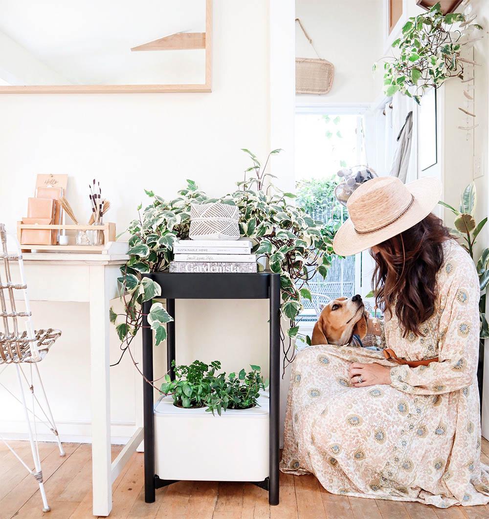 tiny_house_gardening_indoors.jpg