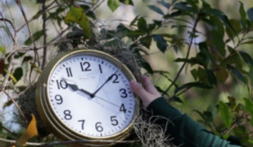 Frame from Persistence of Time by Aki Suzuki and Francesca Giordano.