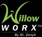 willow worx.jpg