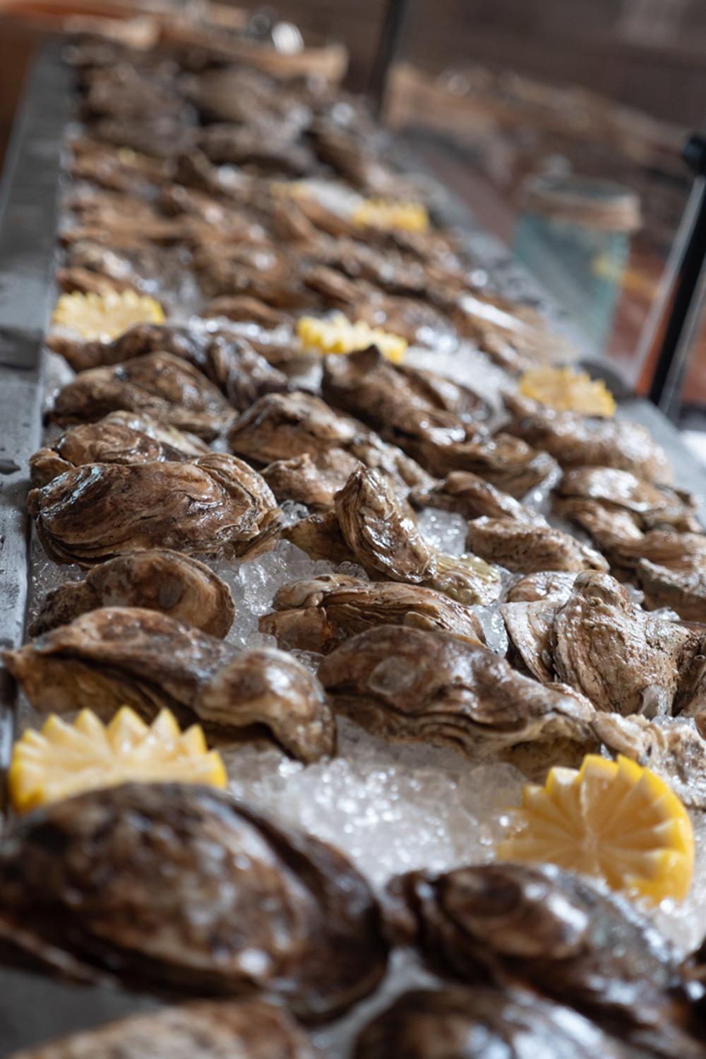 oysters-vertical.jpg