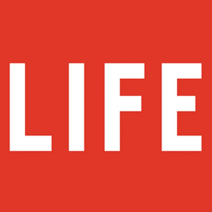 kelsy-zimba-collections-zform-life.jpg