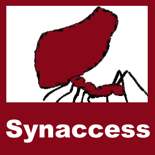 Synaccess Networks Inc.