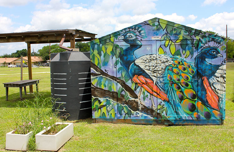 The PEAS garden shed at Cunningham Elementary School. Mural painted by artist JJ Muzacz. (Photo by Dawn Johnson.)