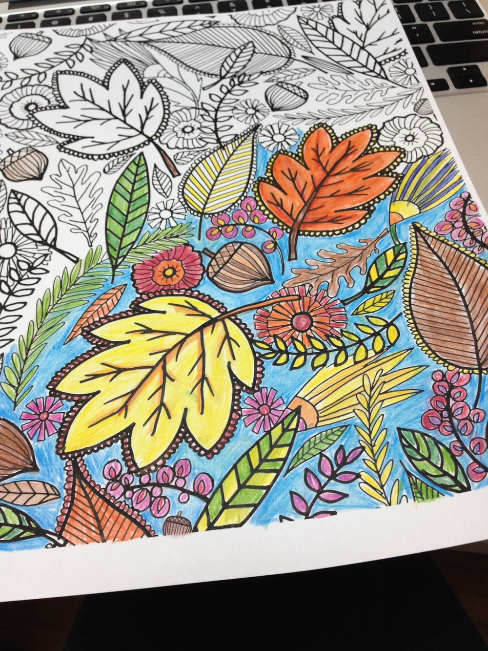 adult coloring sheets.