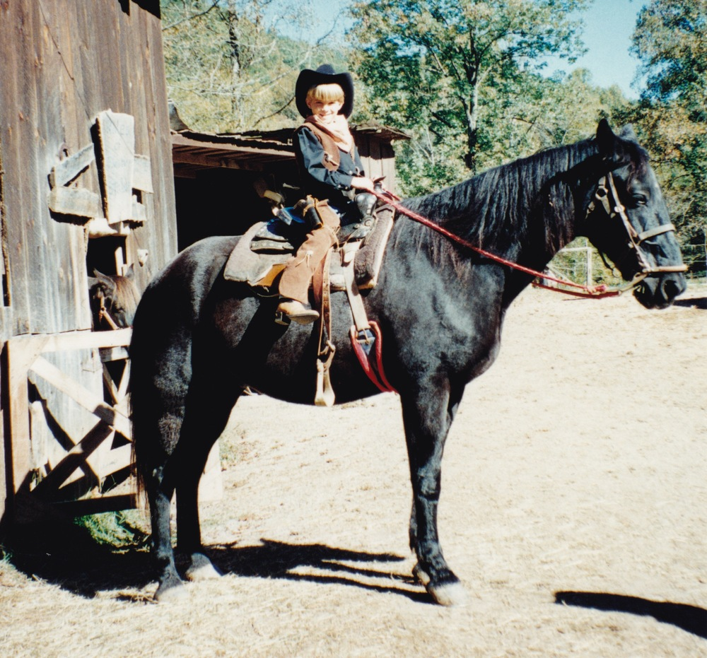 PRINCE, THE HORSE FROM THE CHRISTY SERIES