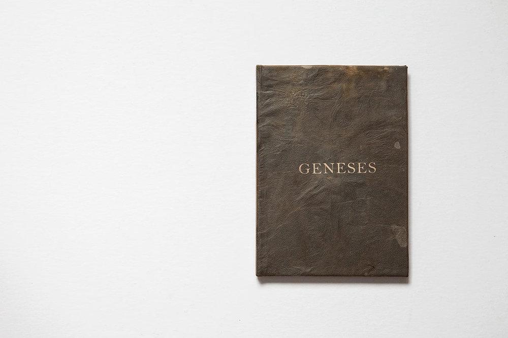 Geneses-2.jpg