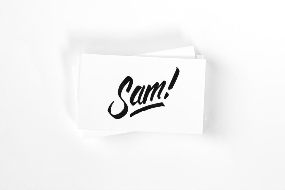 web_sam_960.png