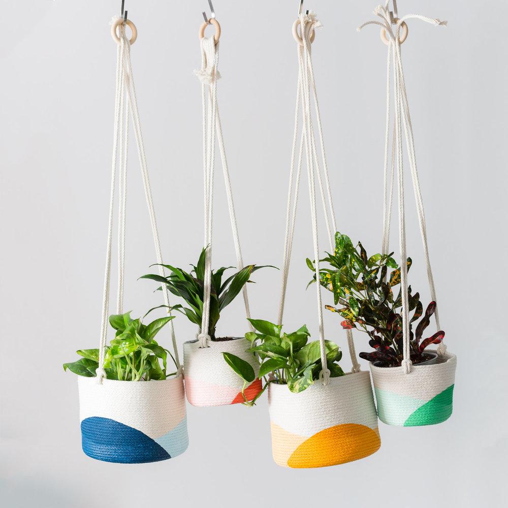 both-planters-2.jpg
