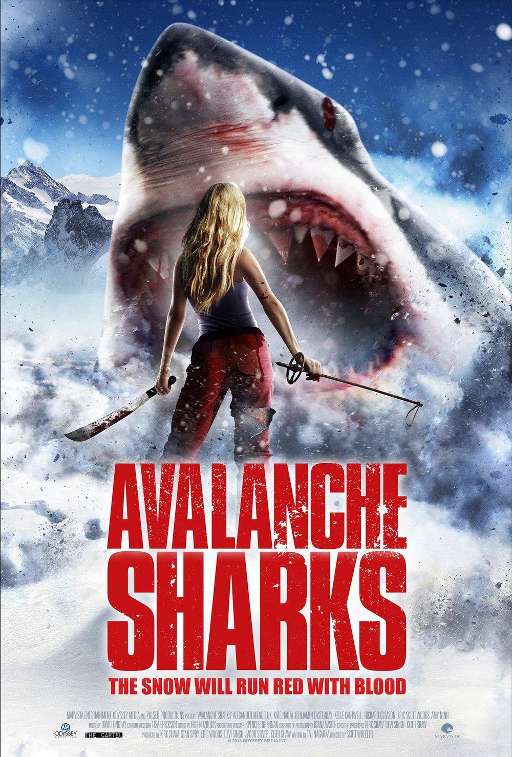Alalanche Sharks.jpg