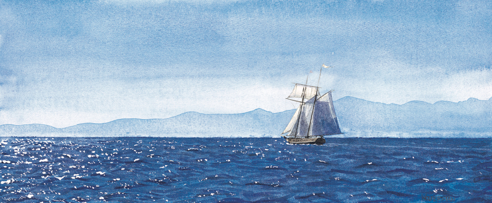 "Pacific Swift in the Juan de Fuca Strait  8.25 x 19.75"""