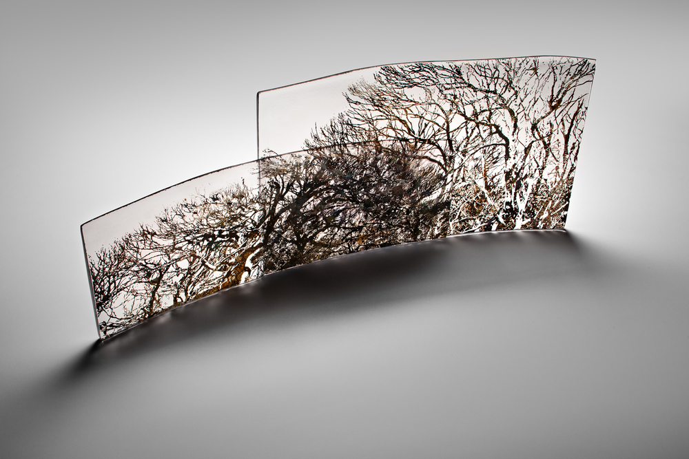 """""""Porcupine Ridge"""" 2012 H240mm x L640mm x W100mm"""