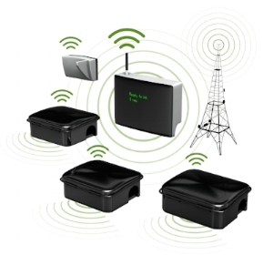 ACX SMART Rodent sensor system_01.jpg
