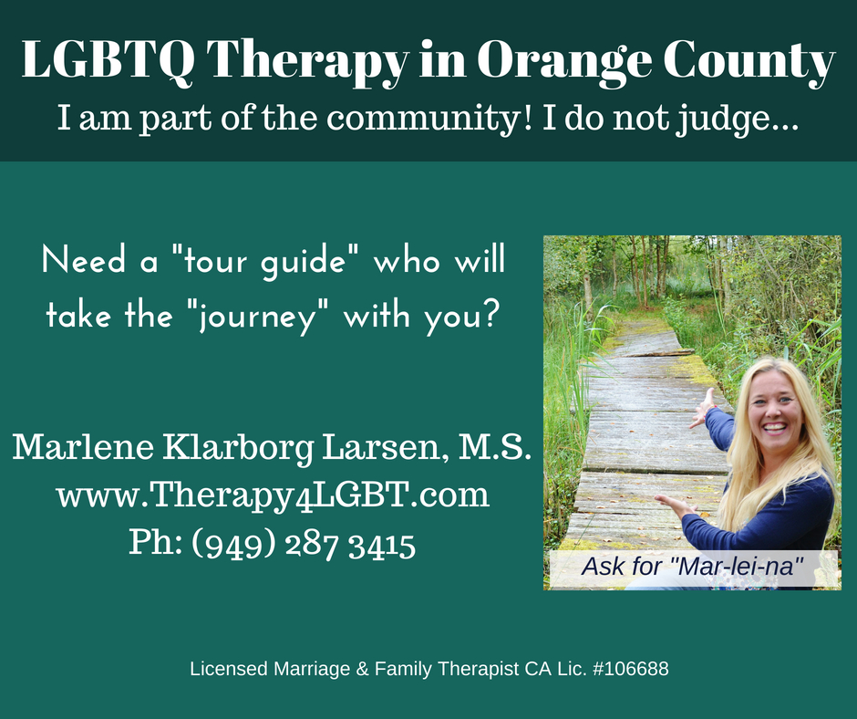 I am part of the community I do not judge. Marlene Klarborg Larsen associate marriage and family therapist gay identified.jpg