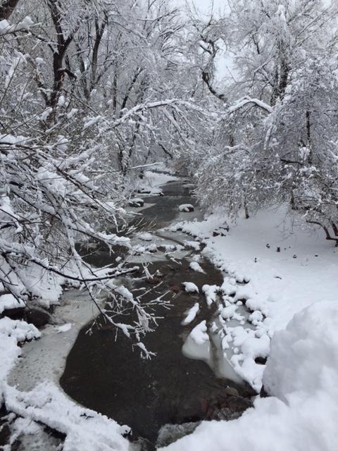 3:23:2016 #3 Creek.jpg