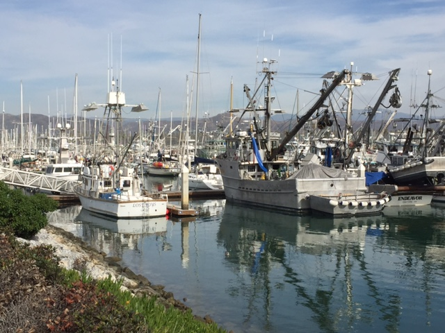 Pre-race day stroll around Ventura Harbor.