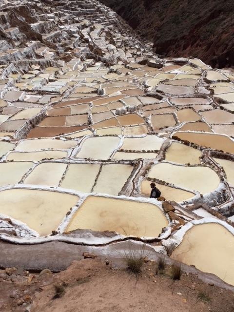 Moray salt mines.