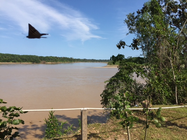 Madre de Rios, at Amazon River Basin, from our open air cabana.
