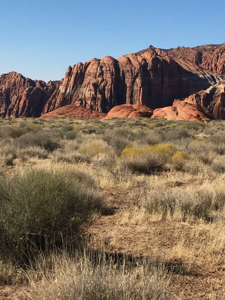 Snow Canyon State Park: Start of 10k Race
