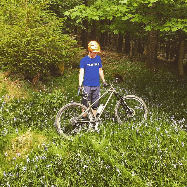 Playing in the dusty bluebells today! #DustyTrails #sunsoutgunsout #btr #ranger #btrbadgers #tollymore #bluebells