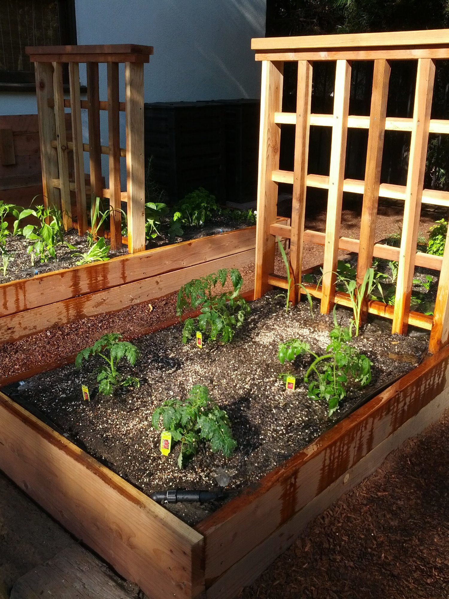 Garden Beds and Planter Boxes — The Urban Farmer