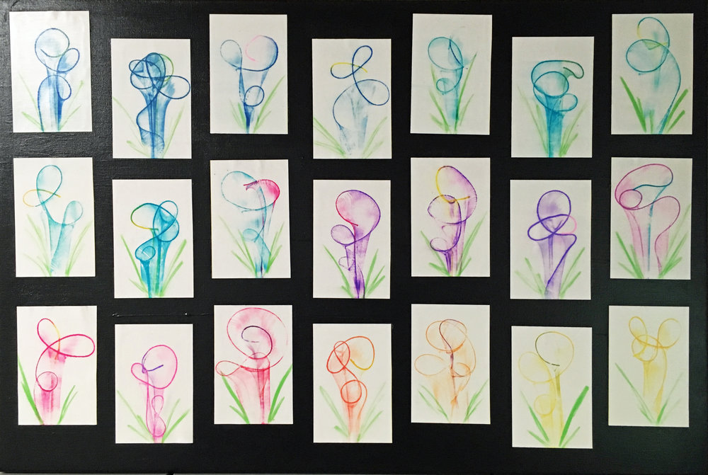 SU String of lilies K.JPG
