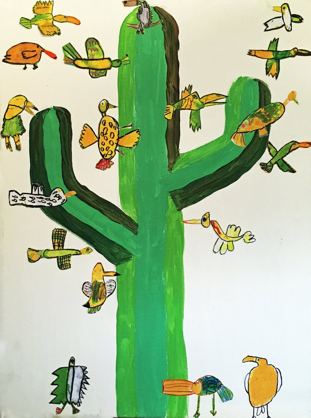 SU Cactus oisif CP.JPG