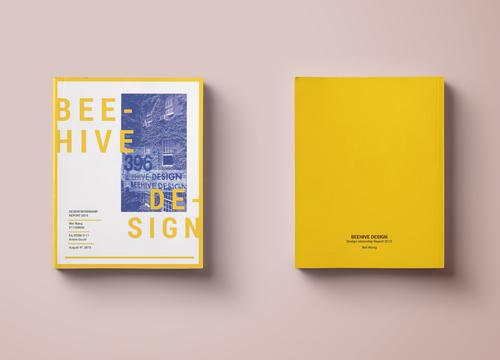 Internship Report Beehive Design  Wei Design