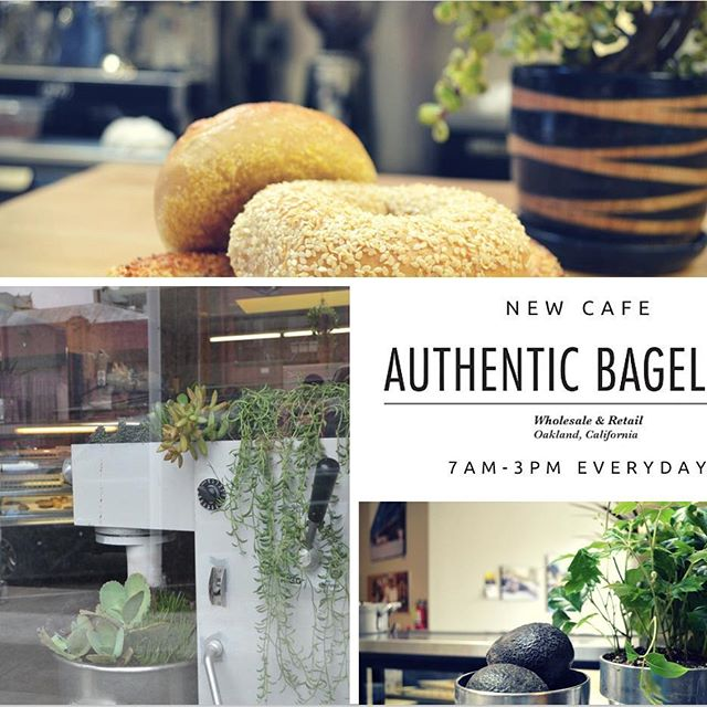 Baked fresh and open everyday 7am to 3pm. #brunch #breakfast #hangovercure #hellagoodbagels #hellayummy #coffee