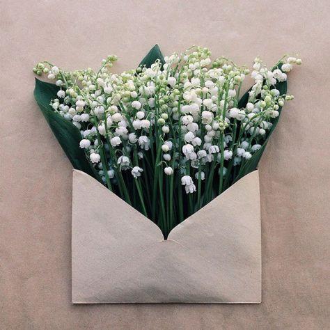 SEND ME FLOWERS
