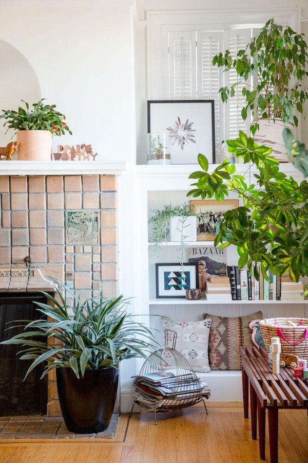 PLANTS ON PLANTS