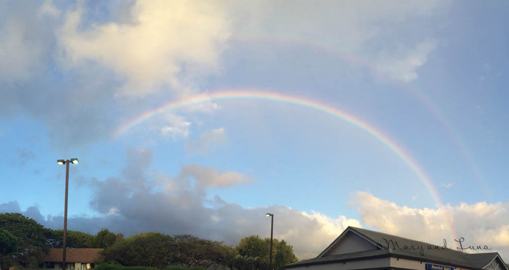 panorama of the double rainbow, full arches!