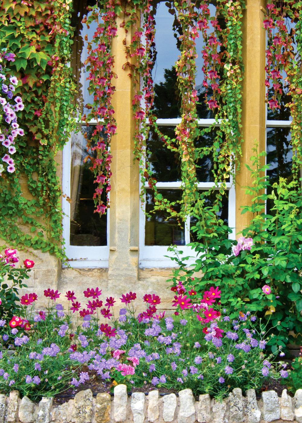Background E - Garden Wall