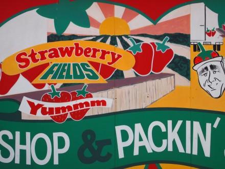 strarberries-1-440x330.jpg