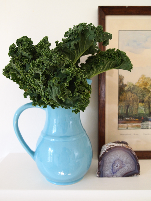 kale_decor_1-1-of-1.jpg