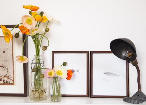 poppies vintage desk tamp
