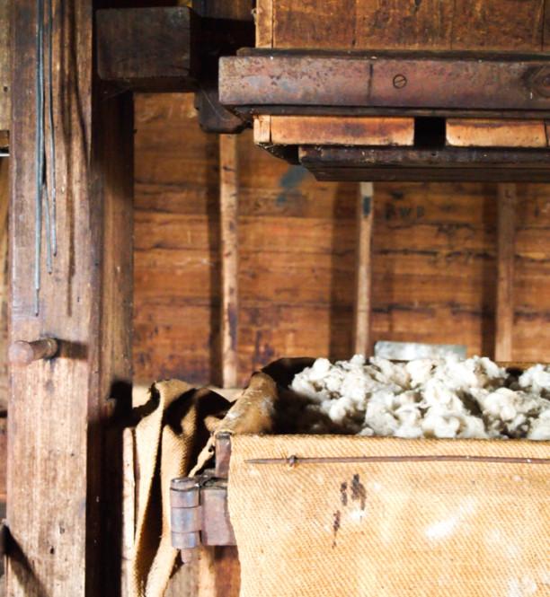 woolmers-5-of-1-612x665.jpg