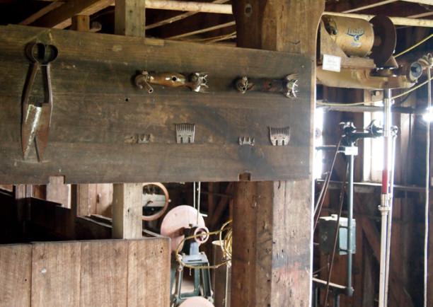 woolmers-6-of-1-612x434.jpg