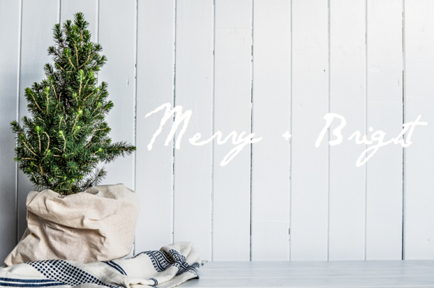 merry-and-bright-1-of-11-612x407.jpg