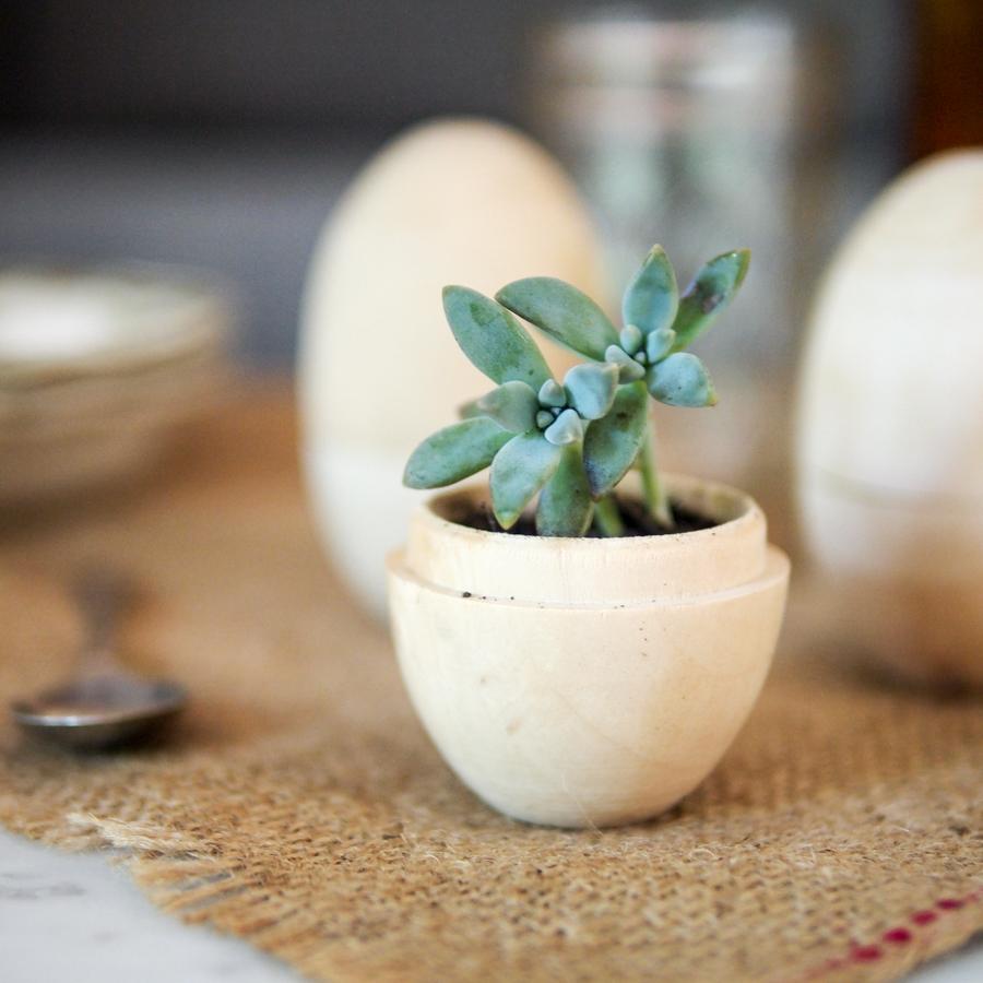 wooden eggs 2.jpg
