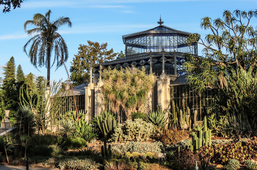 Adeliade botanic gardens.jpg